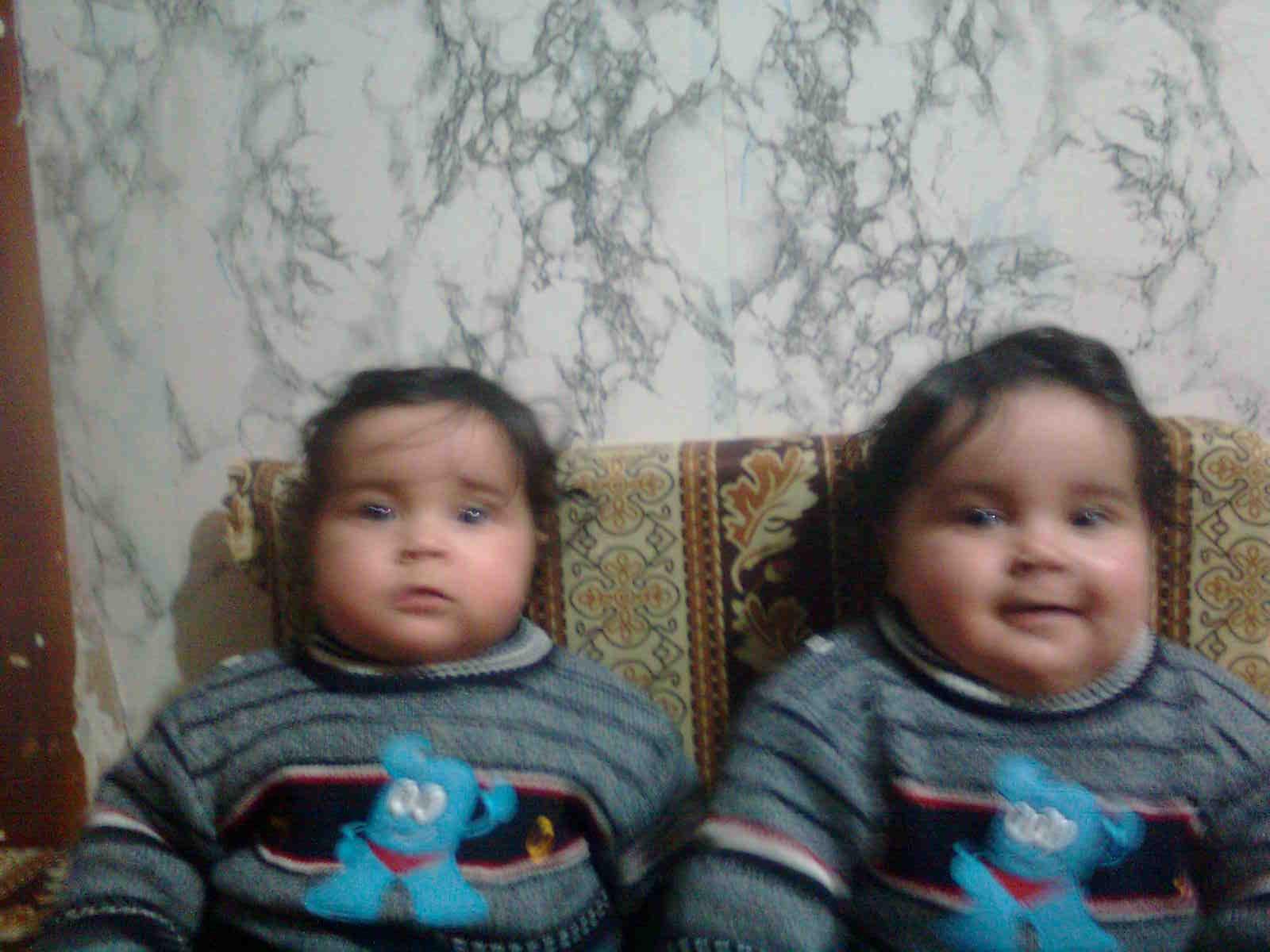 محمد &ومحمود طلعت حرب عبد الحميد الفرا